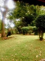 Plot 99 | Masaka, Uganda