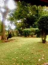 Plot 99   Masaka, Uganda